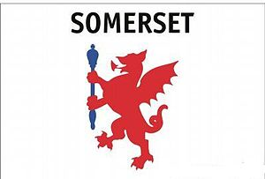 Flag of Somerset - Commercially available variant flag