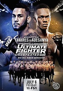 The Ultimate Fighter 27 Finale poster.jpg