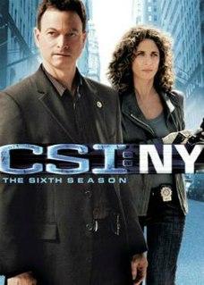 <i>CSI: NY</i> (season 6) season of television series