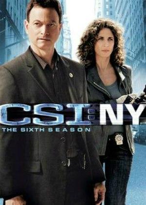 CSI: NY (season 6) - Image: CSI NY, The 6th Season