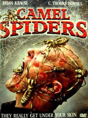 Camel Spiders (film) - Image: Camel spiders dvd cover