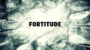 Fortitude (TV series) - Image: Fortitude titlecard