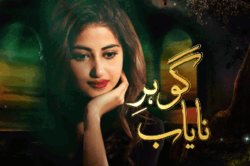 Nayab Hain Hum Novel Pdf