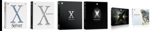 Box artwork for Mac OS X Server versions 10.1–10.6