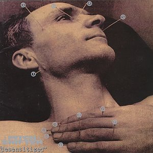 Desensitized (Pitchshifter album) - Image: Pitchshifter Desensitized cover