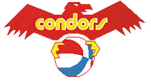 Pittsburgh PipersMinnesota PipersPittsburgh Condors logo