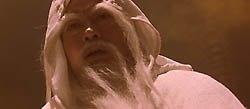 Sammo Hung white eyebrows