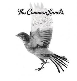 The Common Linnets (album) - Image: The Common Linnets album
