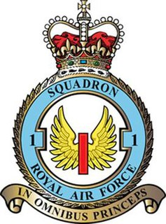 No. 1 Squadron RAF Royal Air Force fighter squadron