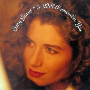 I Will Remember You (Amy Grant song) - Image: Amy Grant I Will Remember You single