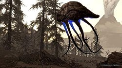 The Elder Scrolls V: Skyrim – Dragonborn - Wikipedia