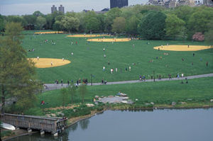 Central Park Conservancy - Image: Great Lawn
