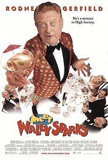Meet Wally Sparks (1997) poster.jpg