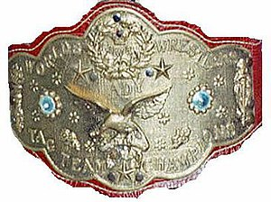 "WWF Women's Tag Team Championship - One of the WWF Women's Tag Team Championship belts, reading: ""NWA Worlds Lady Wrestlers Tag Team Champions"""