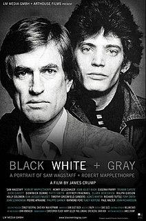 <i>Black White + Gray</i> 2007 documentary film