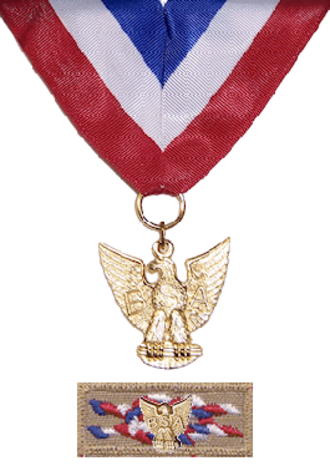 Distinguished Eagle Scout Award - Medal with device on knot emblem