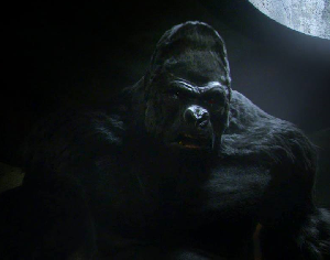 Gorilla Grodd - Grodd in The CW television series The Flash
