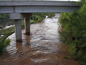 San Pedro River (Arizona) - A typical river flow following the monsoon rains. This photo was taken August 16, 2005 at the Charleston Road bridge, several miles west of Tombstone, Arizona. Estimated depth at this location is 5 feet.