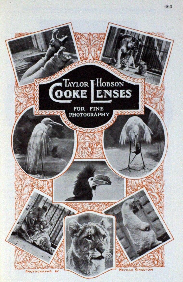 Taylor, Taylor & Hobson advert, 1925.jpeg