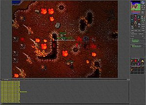 Tibia (video game) - A team hunting Hellspawns.