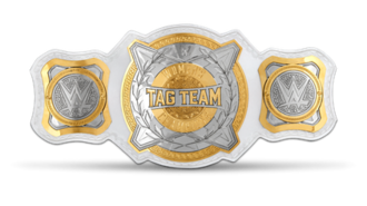 WWE Women's Tag Team Championship - The WWE Women's Tag Team Championship belt with default side plates.