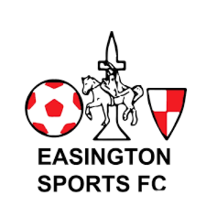 Easington Sports F.C. - Image: Easington Sports F.C. logo