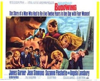 Mister Buddwing - Image: Mister Buddwing poster