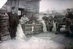 William Bradbery - William's grandson Richard Bradbery at the watercress farm West Hyde