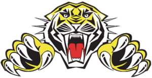 Sheffield Tigers - Image: Sheffieldspeedway