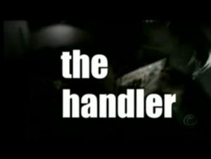 The Handler (TV series) - Title screen