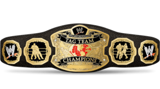 World Tag Team Championship (WWE) - The World Tag Team Championship belt's final design (used from 2002 to 2010)