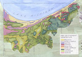Habitats of the Indiana Dunes