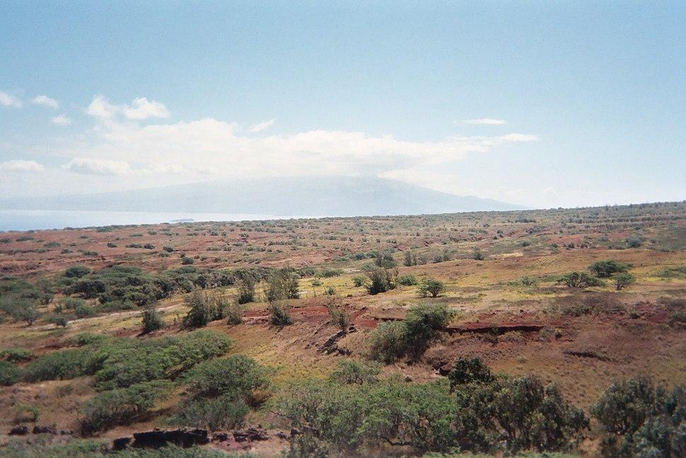 Kahoolawe vegetation