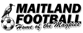 Maitland FC - Image: Maitland FC logo