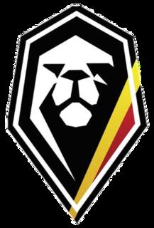 Belgium national basketball team national sports team