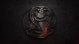 <i>Cobra Kai</i> American martial arts dramedy streaming TV series