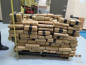 Operation Kruz Control - Image: Marijuana Seized During Operation Kruz Control Arizona 2016 12 16