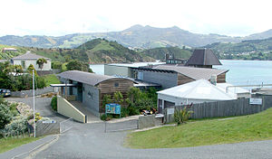 Portobello Marine Laboratory - NZ Marine Studies Centre.