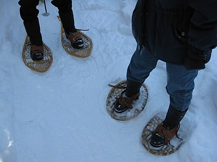Teardrop snowshoes and Bearpaw snowshoes in the Gatineau Park Snowshoes two styles.JPG
