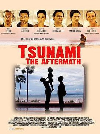 Picture of a movie: Tsunami: The Aftermath