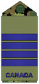 Air Force olive Col.png