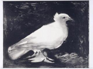 <i>Dove</i> (Picasso) Lithograph by Pablo Picasso