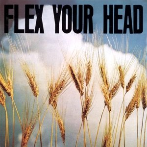 Flex Your Head - Image: Flex Your Head cover