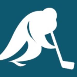 Ice hockey at the 1998 Winter Olympics - Image: Ice Hockey, Nagano 1998