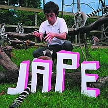Jape's The Monkeys in the Zoo Have More Fun Than Me album cover.jpg