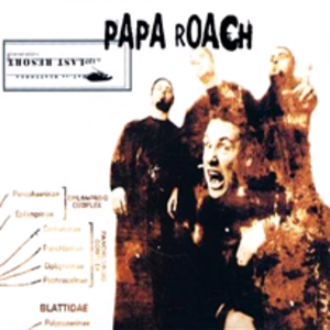 Last Resort (song) - Image: Papa roach last resort