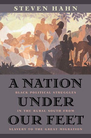 A Nation under Our Feet - Image: A Nation under Our Feet (book cover)