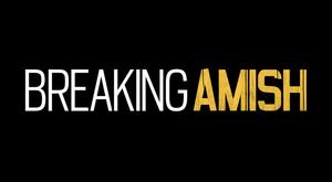 Breaking Amish - Image: Breaking Amish tlc logo