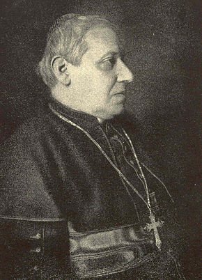 His friend Cardinal Rampolla at age 70 shortly before his death Rampolla 1913.jpg