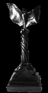 Independent Spirit Awards award